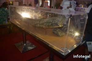 Pameran Arkeologi Tegal