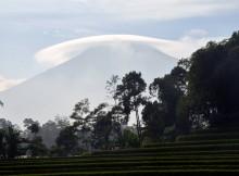 Fenomena Awan Payung di Gunung Slamet